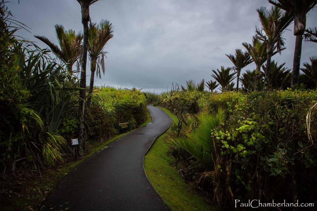 Nouvelle Zélande-île du sud-