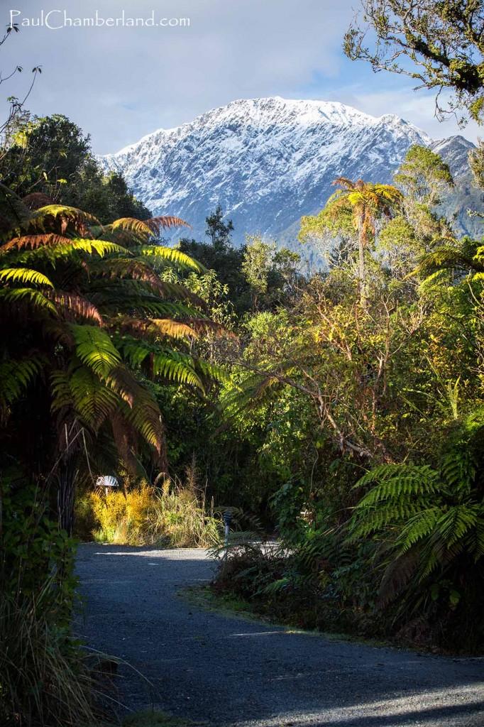 Nouvelle Zélande-île du sud-Franz Josef
