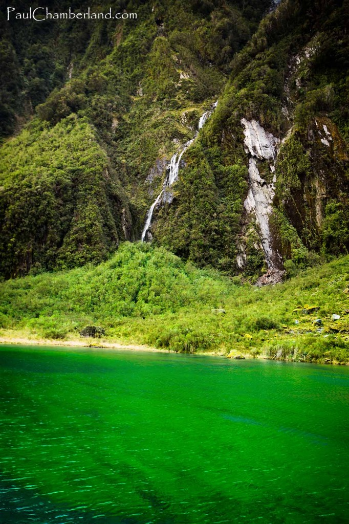 Nouvelle Zélande-île du sud-Fox Glacier-Lac vert/bleu